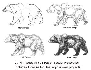 bear1webcollage