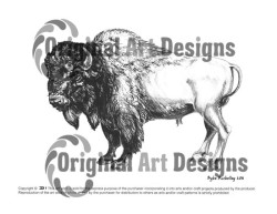 buffalo1CW-250×193
