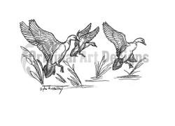 ducksflying1drCW-250×181